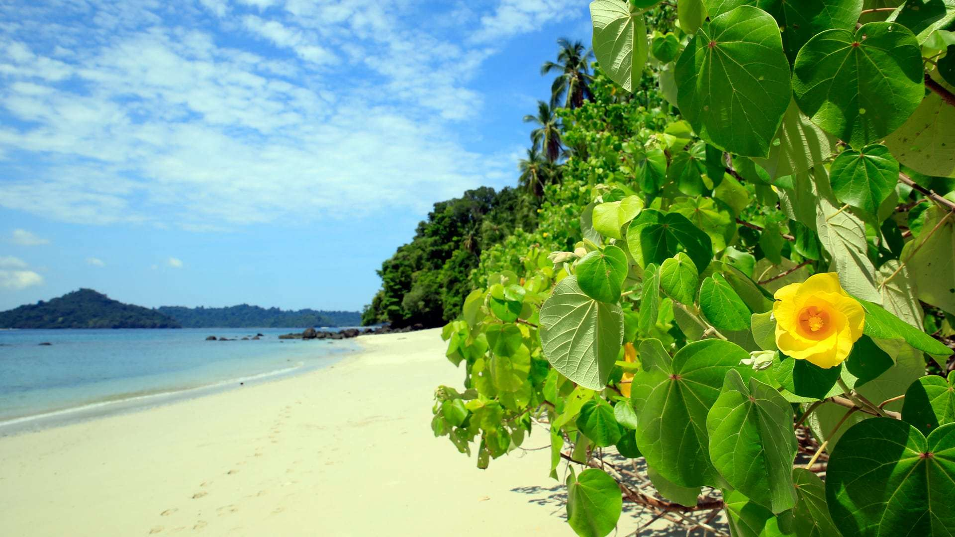 National Park Coiba
