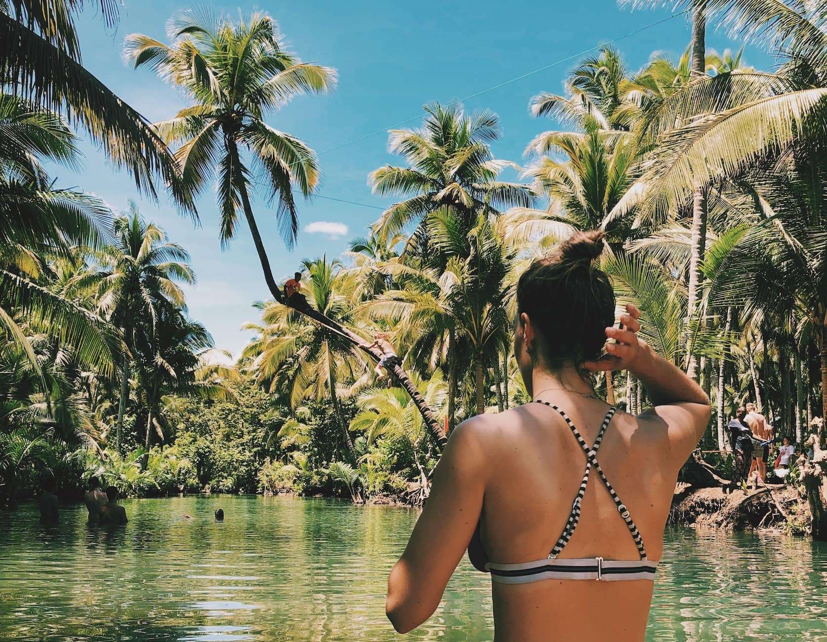 Siargao palmbomen